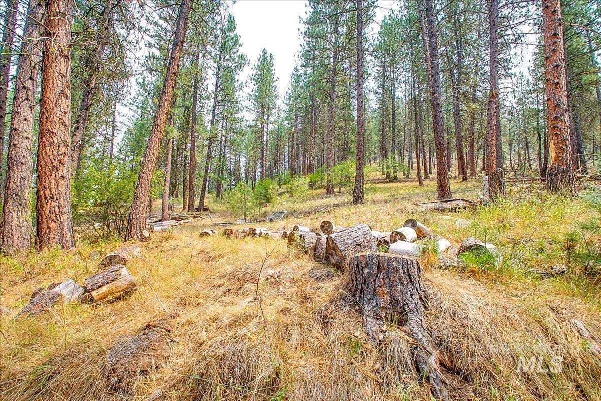30 Green Ranch Rd Property Photo 48