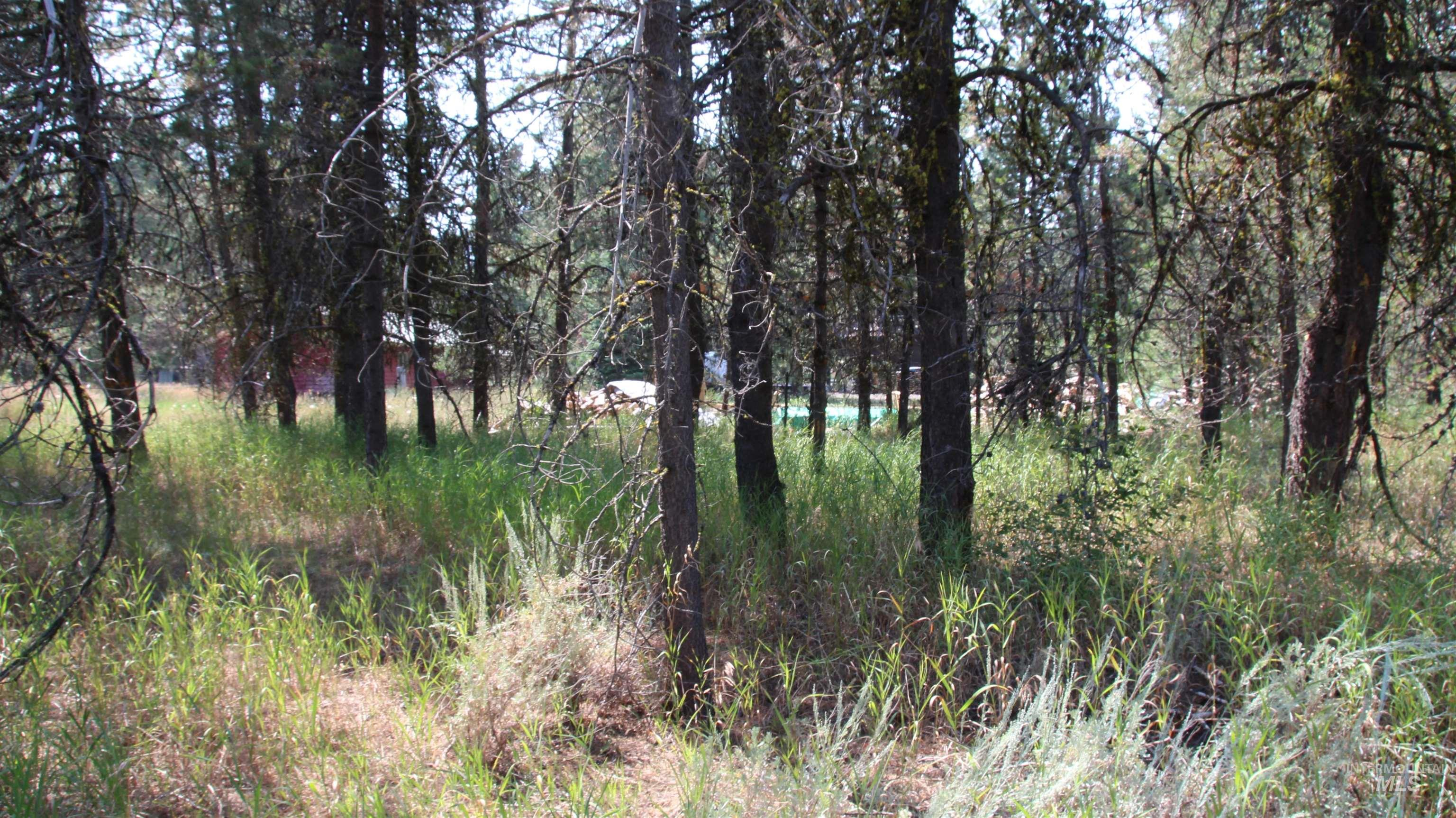 101 B Westwind Ln Property Photo 10