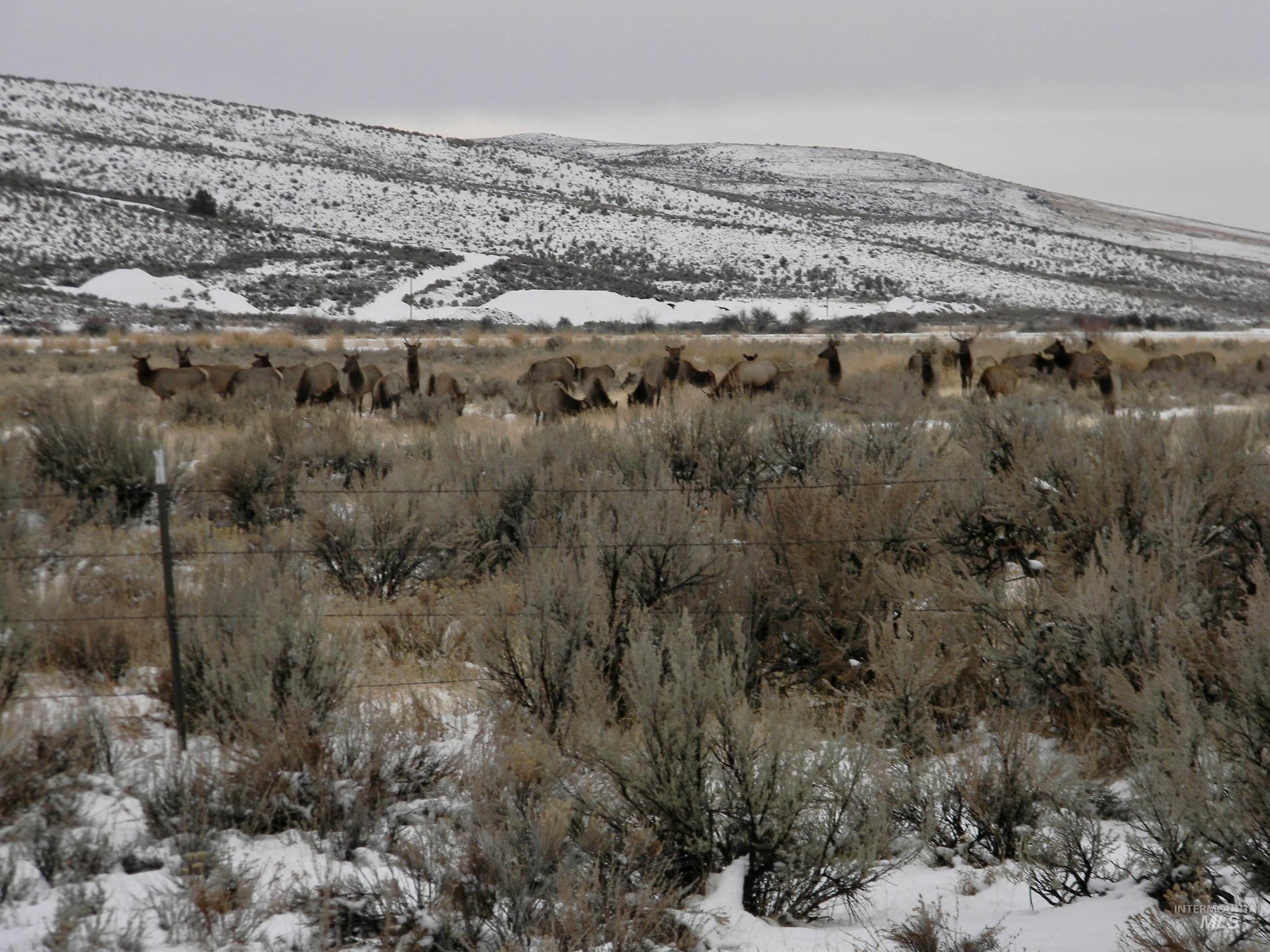 2015 Cow Creek Rd. Property Photo 21