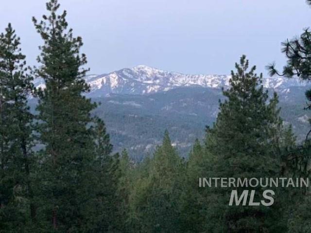 83 Castle Mountain Dr. Property Photo