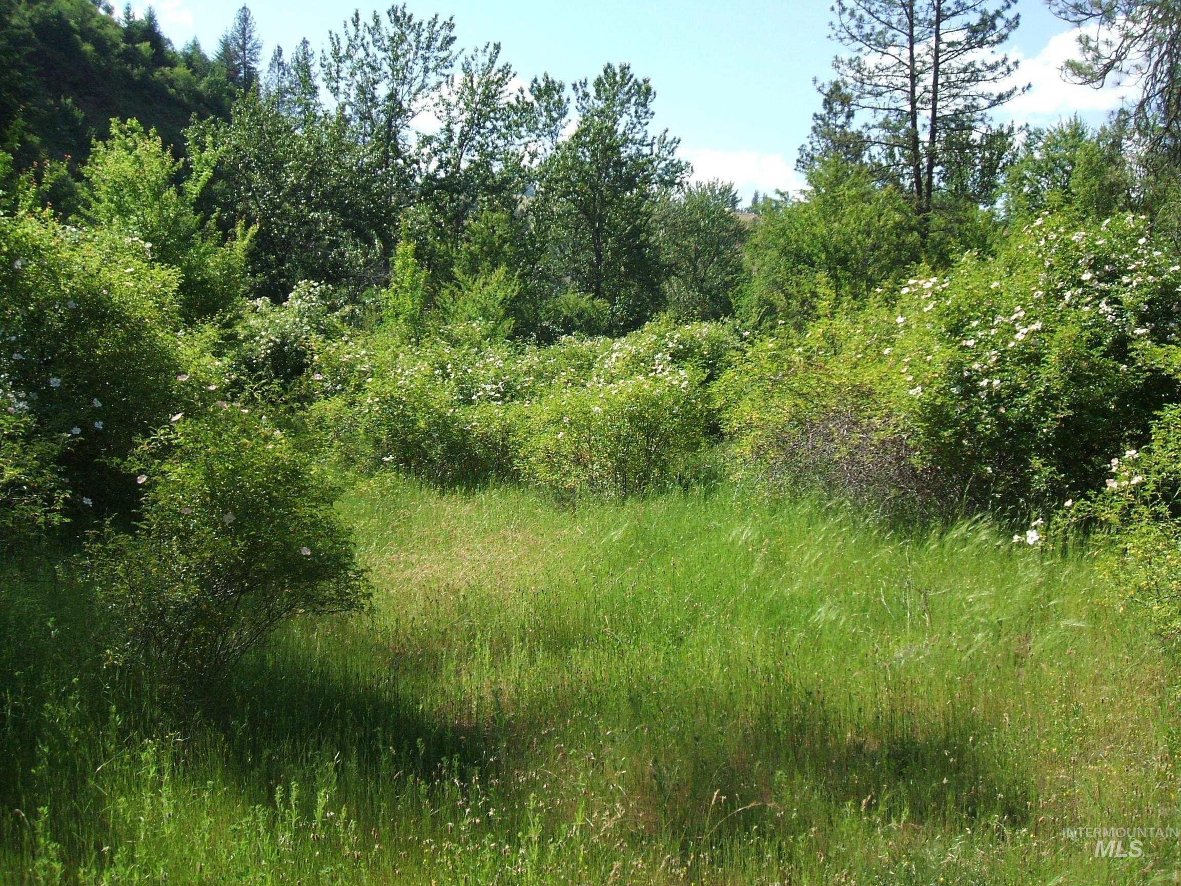 160 &152 Rabbit Creek Rd Property Photo