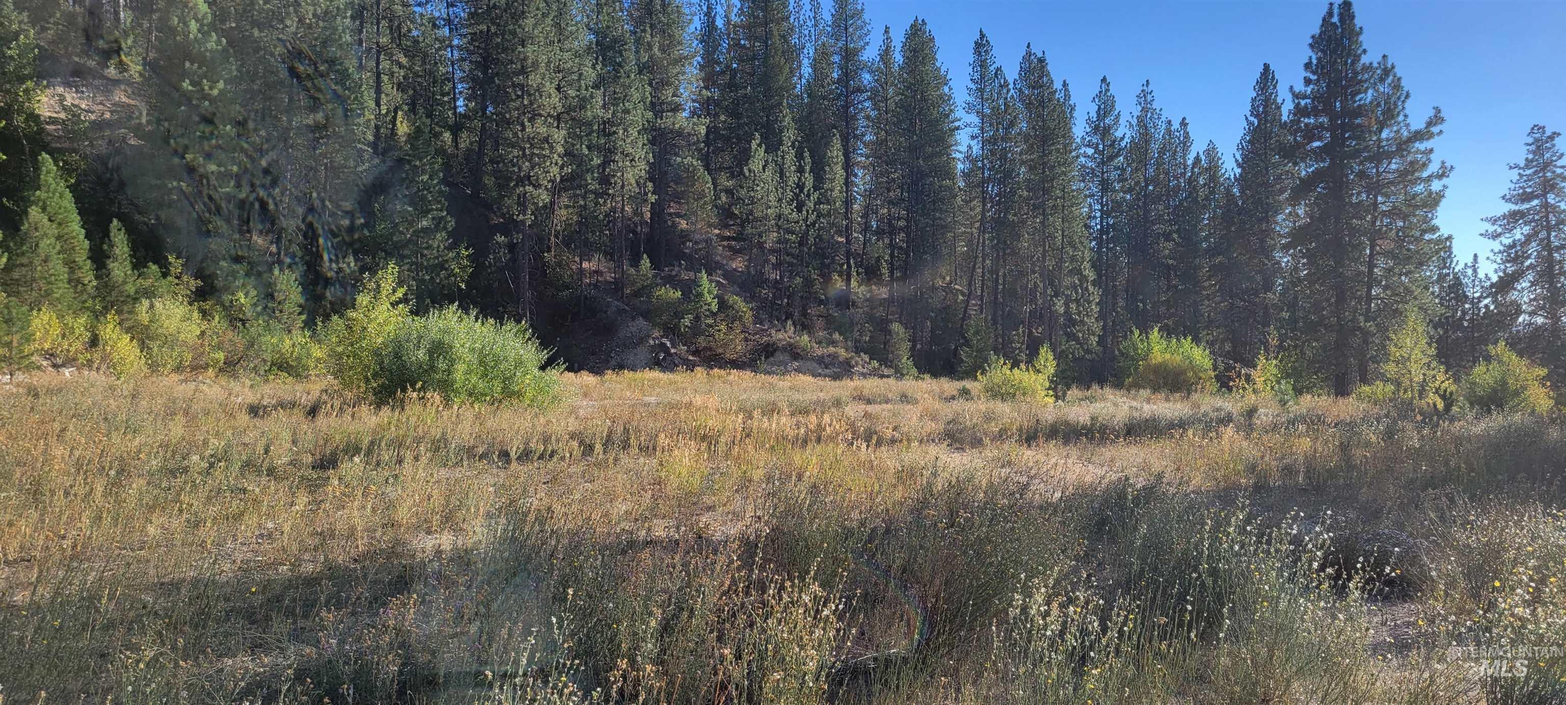 304 Elk Creek Property Photo