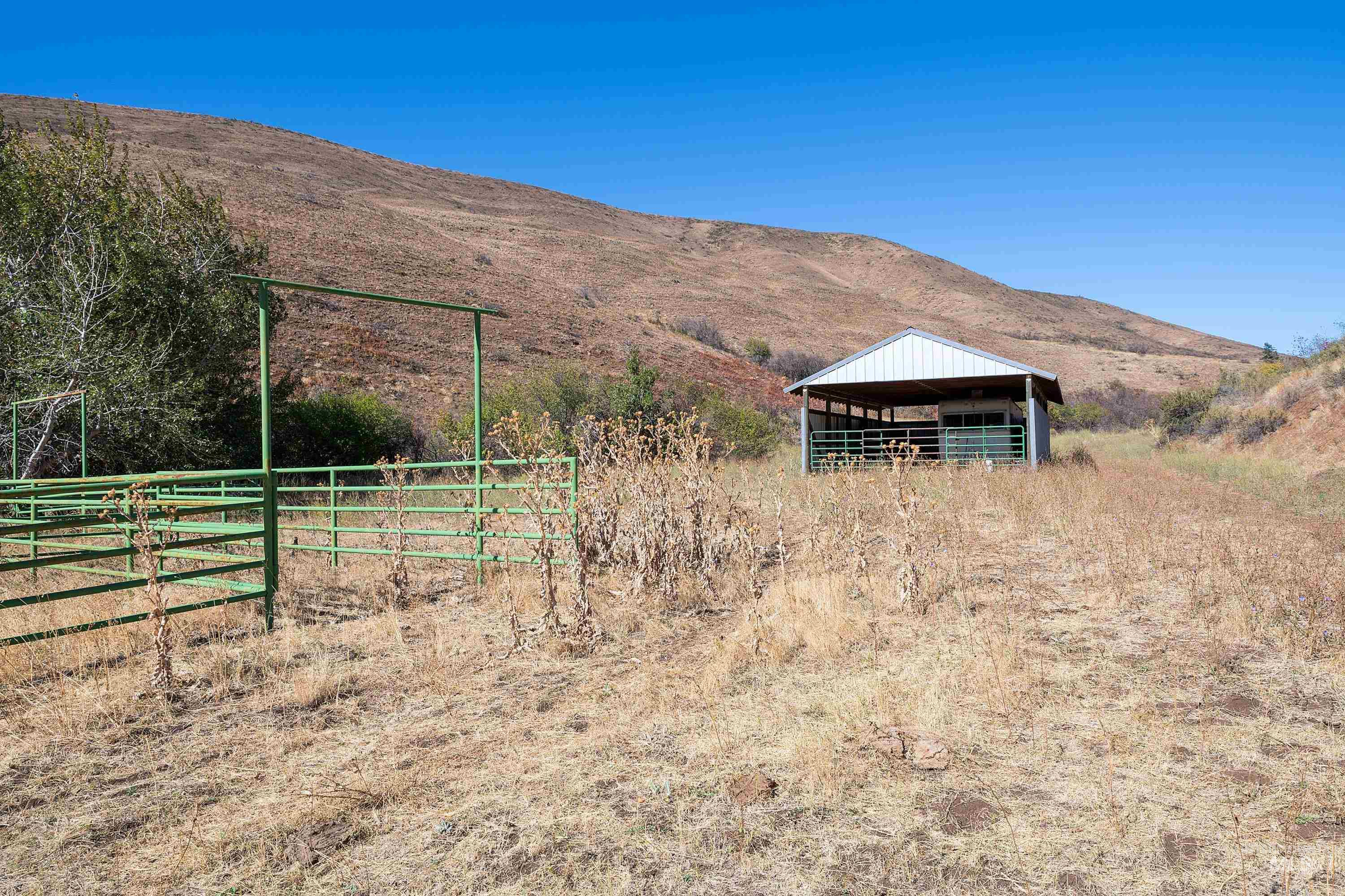 3068 Hwy 71 And Land Property Photo 15