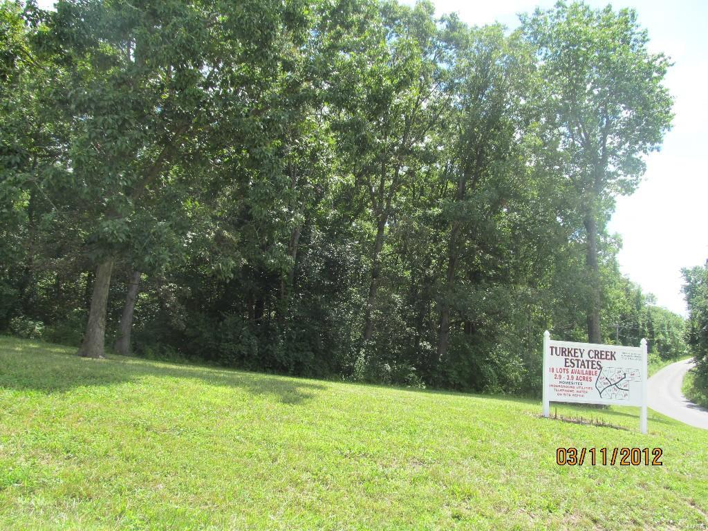 190 Turkey Creek Road Property Photo - Hawk Point, MO real estate listing