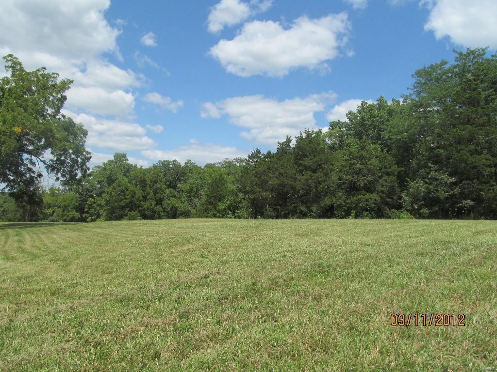 20 Turkey Run Drive Property Photo - Hawk Point, MO real estate listing