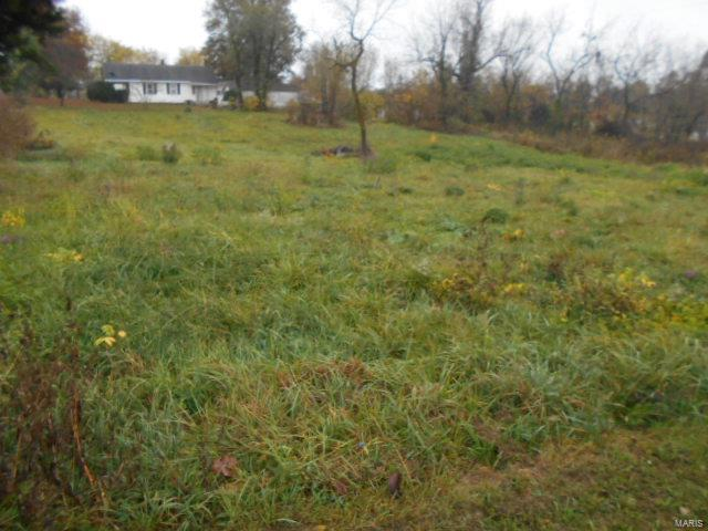 0 Ruby Property Photo - Conway, MO real estate listing