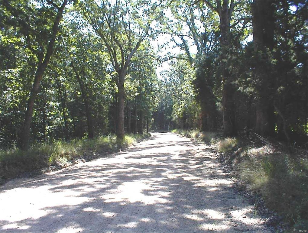 3971 Blocks Branch Road Property Photo - Owensville, MO real estate listing