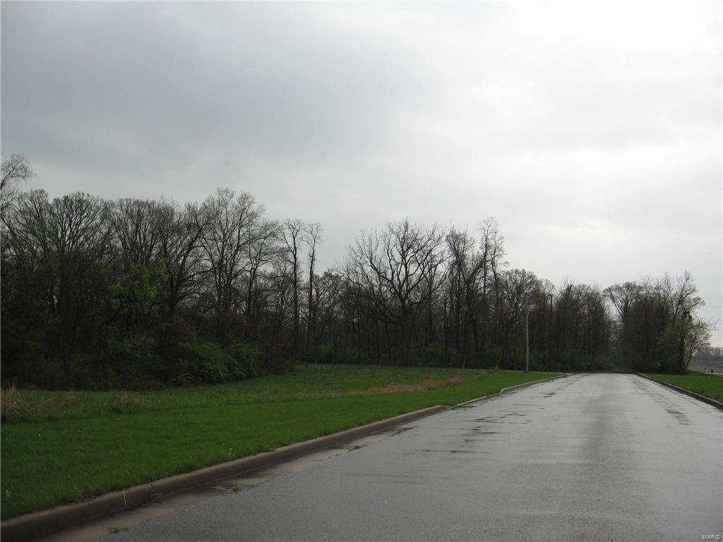 0 Vaughn Rd/State Rt. 111 Property Photo - Wood River, IL real estate listing
