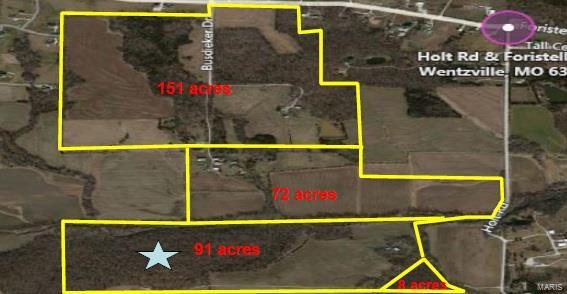 0 Holt Road Property Photo - Unincorporated, MO real estate listing