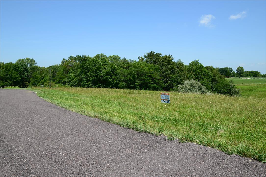 231 Rocking Horse Lane Property Photo - Elsberry, MO real estate listing