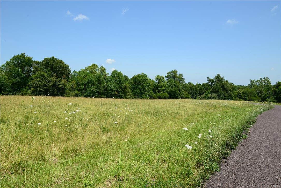 51 Bryant's Creek Drive Property Photo - Elsberry, MO real estate listing