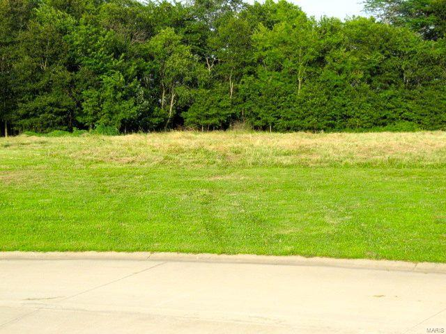 0 TORTOISE Trail Property Photo - Gillespie, IL real estate listing