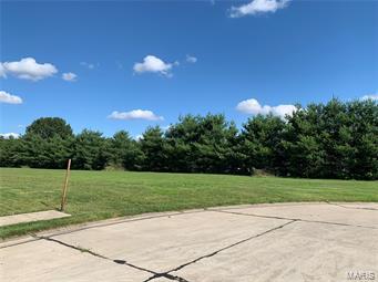 398 Gadwall Court Property Photo - Staunton, IL real estate listing