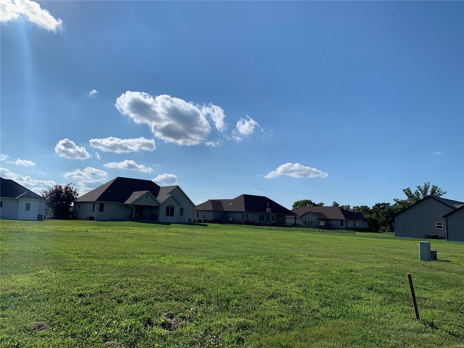 399 Gadwall Court Property Photo - Staunton, IL real estate listing