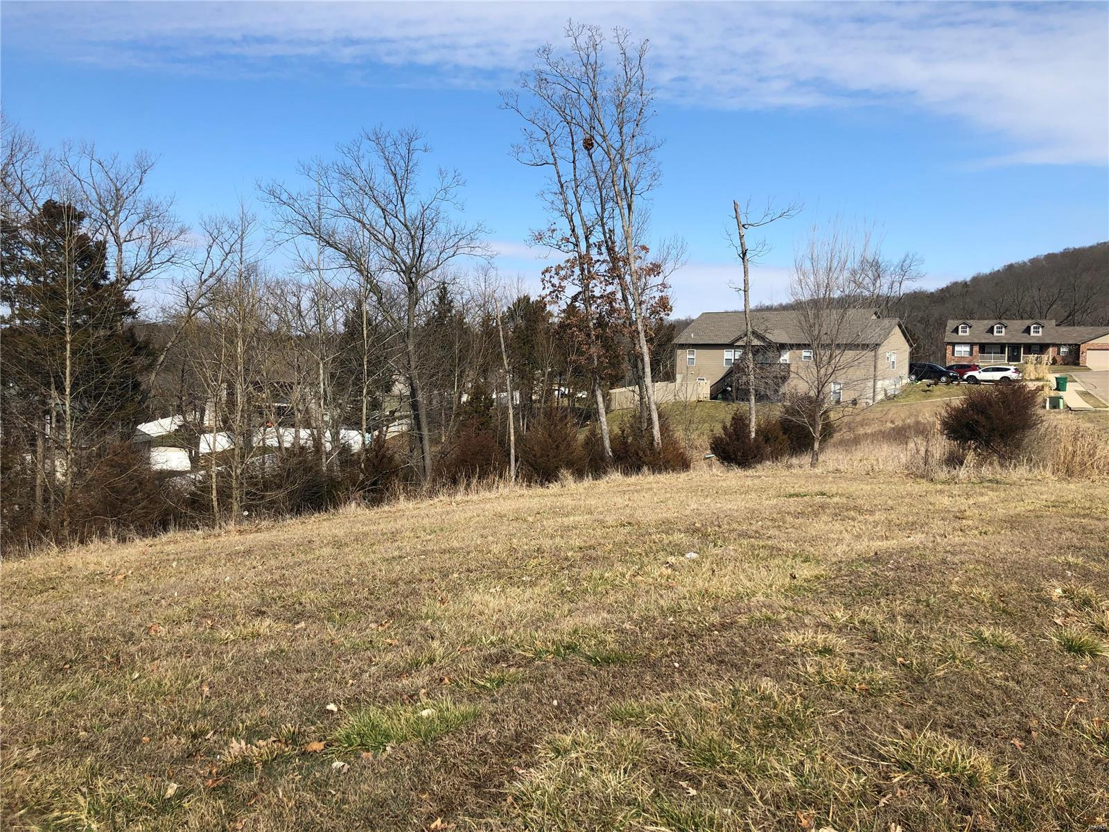 0 Echo Lake (Lot 80) Circle Property Photo - Byrnes Mill, MO real estate listing