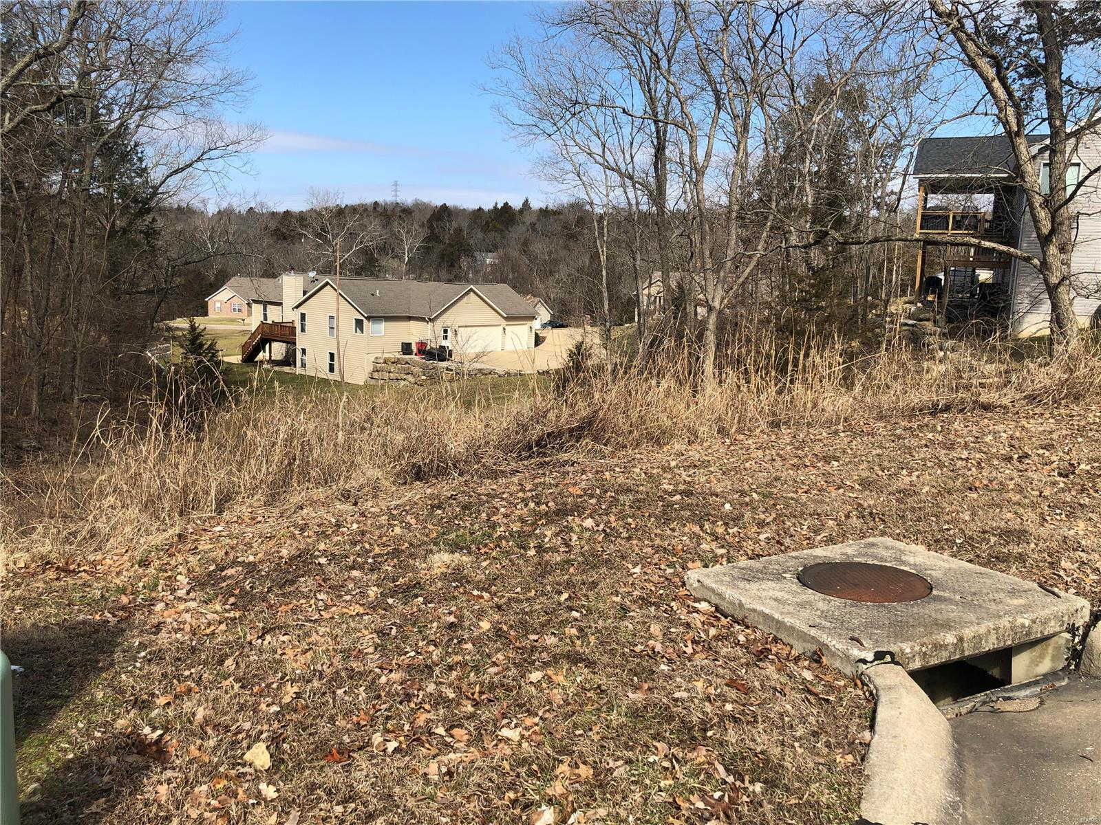3 Broken Arrow Court Property Photo - Byrnes Mill, MO real estate listing