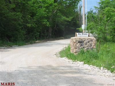 0 Springdale Road Property Photo - De Soto, MO real estate listing