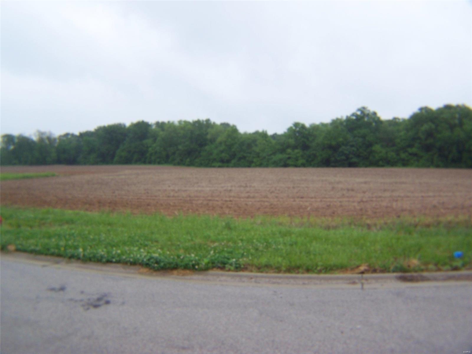 0 Wedgewood Lane Property Photo - Trenton, IL real estate listing