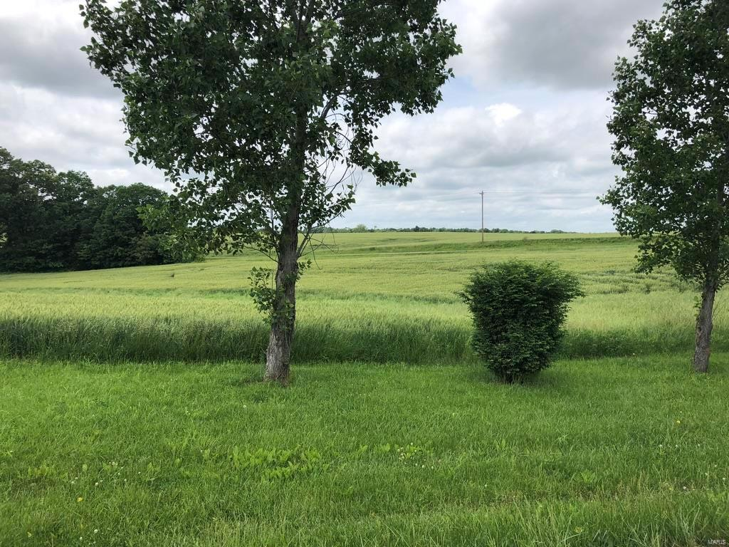 0 Lot 11 Tyler Branch Road Property Photo - Perryville, MO real estate listing