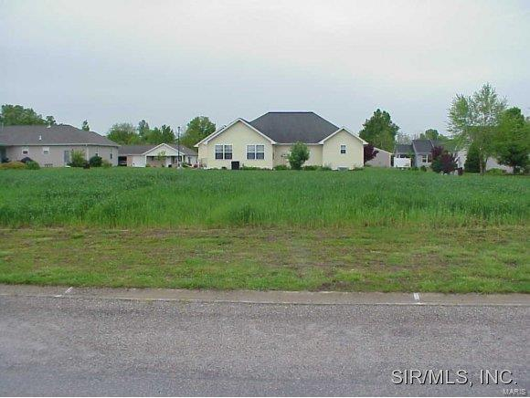 113 CREEKVIEW Drive Property Photo - Damiansville, IL real estate listing