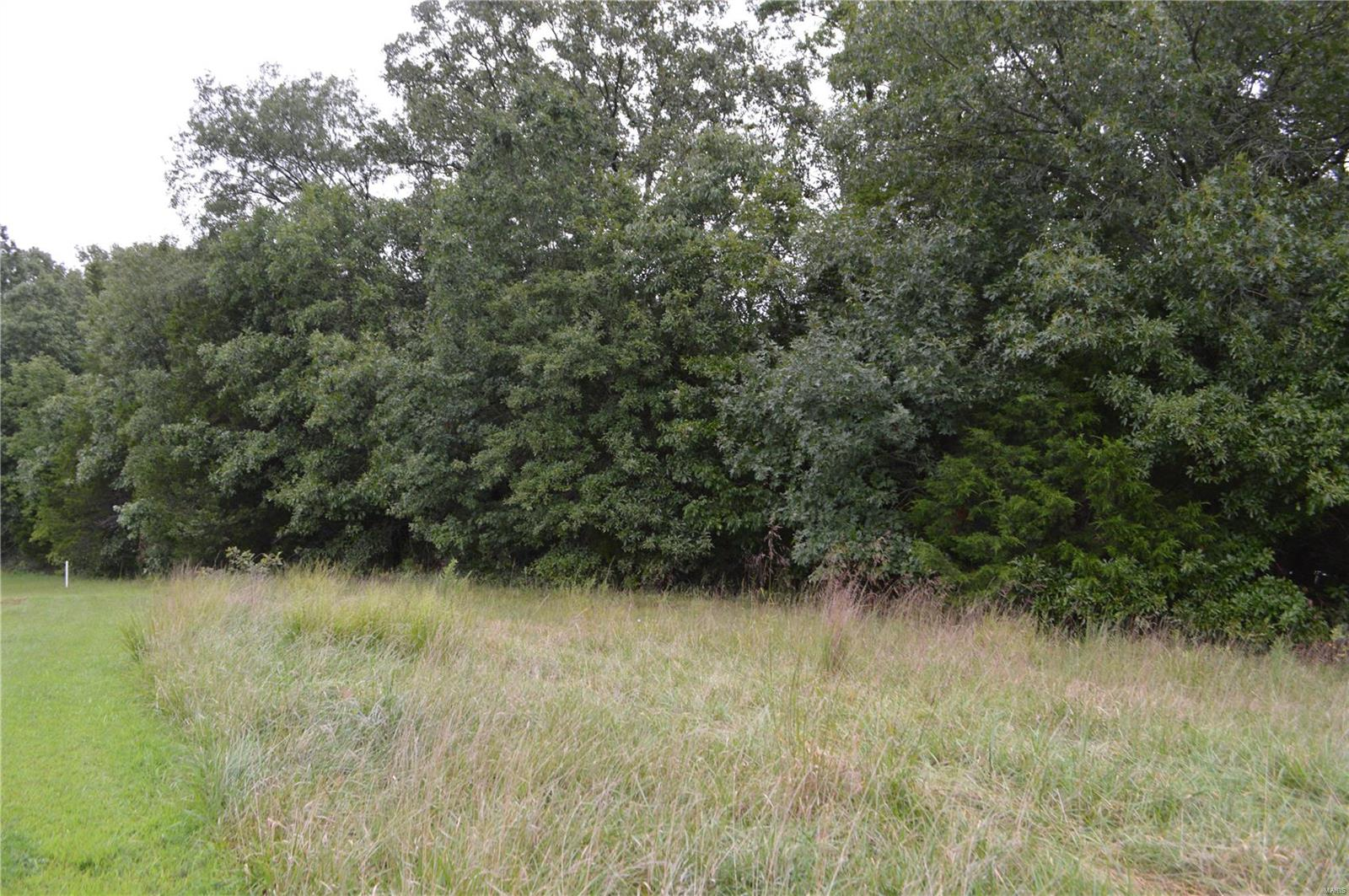 9479 Bent Tree Drive Property Photo - Hillsboro, MO real estate listing