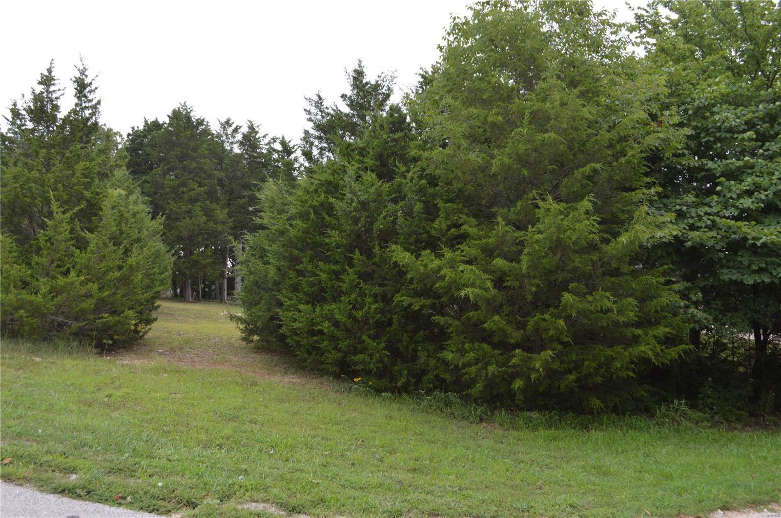 52 Raintree Property Photo - Hillsboro, MO real estate listing