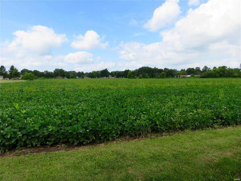 0 Cahokia Property Photo - Benld, IL real estate listing