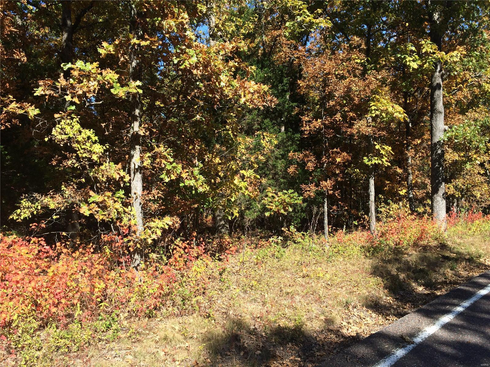 5503 US Highway 61-67 (LOT 46) Property Photo - Imperial, MO real estate listing