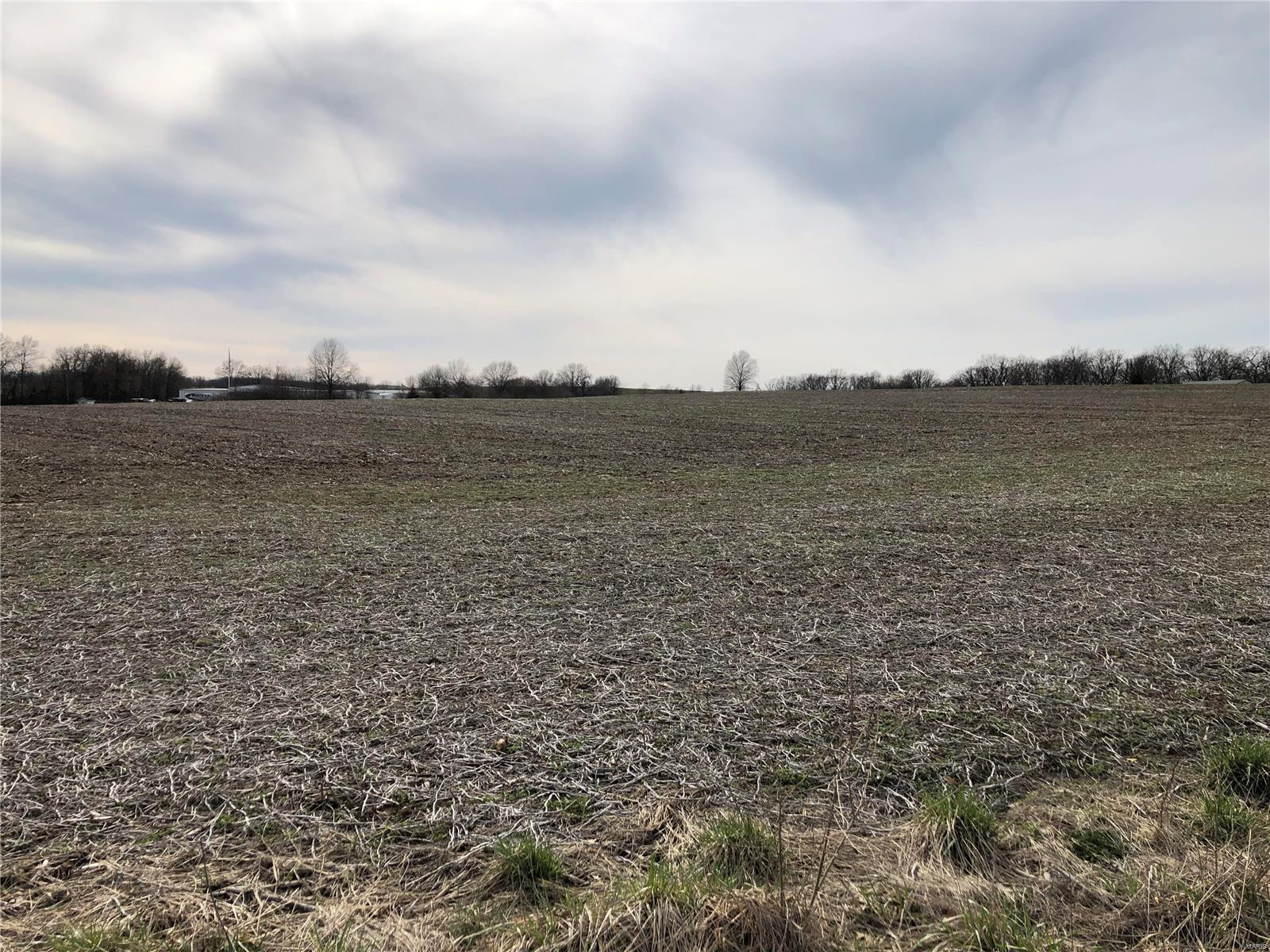 25 acres on W. Outer Hwy 61 Property Photo - Moscow Mills, MO real estate listing