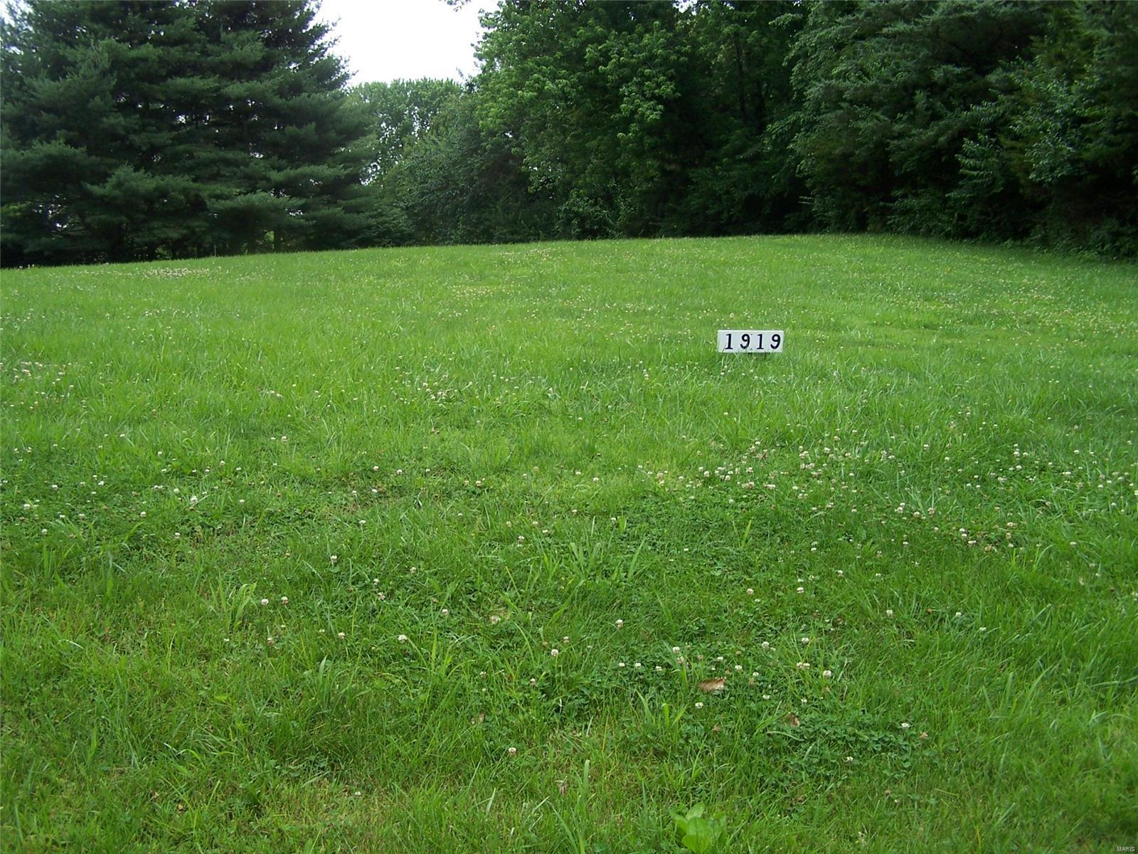 1918 Captain's Drive Property Photo - Worden, IL real estate listing
