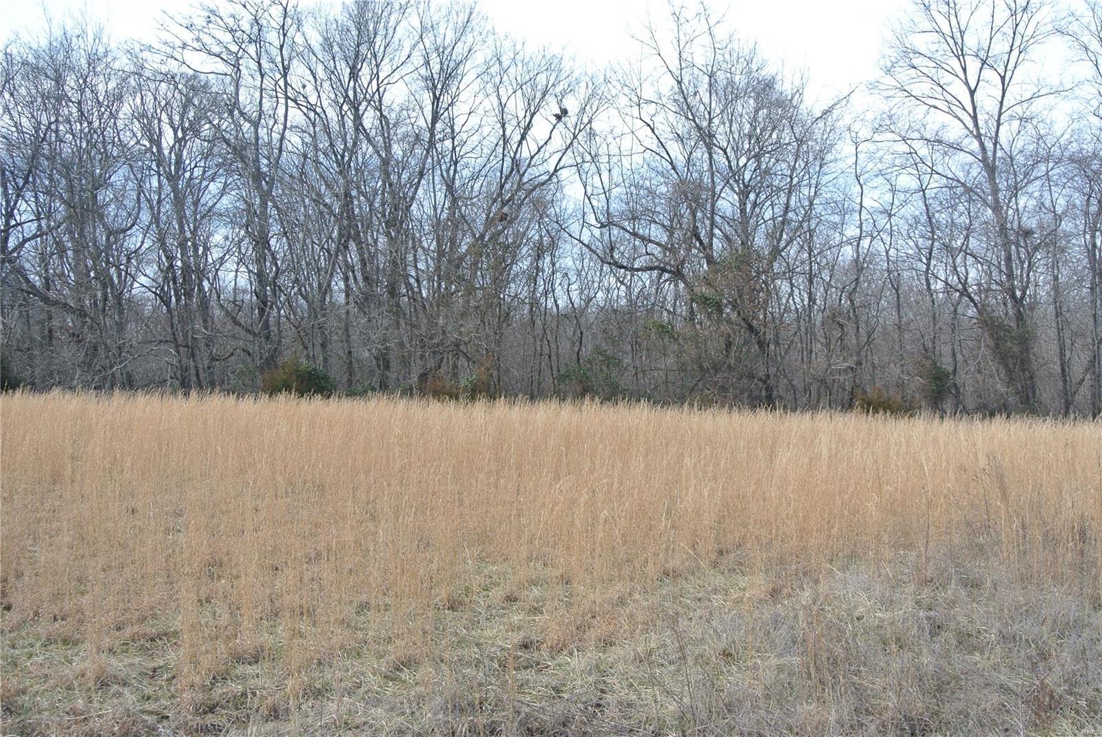 0 lot 3 Tyler Branch Road Property Photo 1