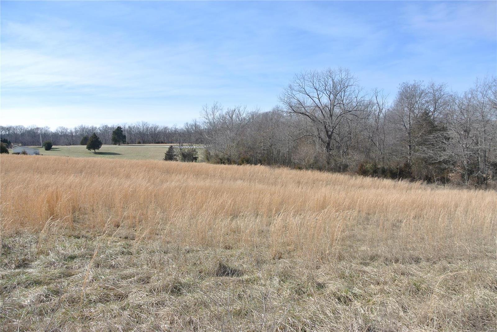 0 lot 37 Woods View Lane Property Photo - Perryville, MO real estate listing