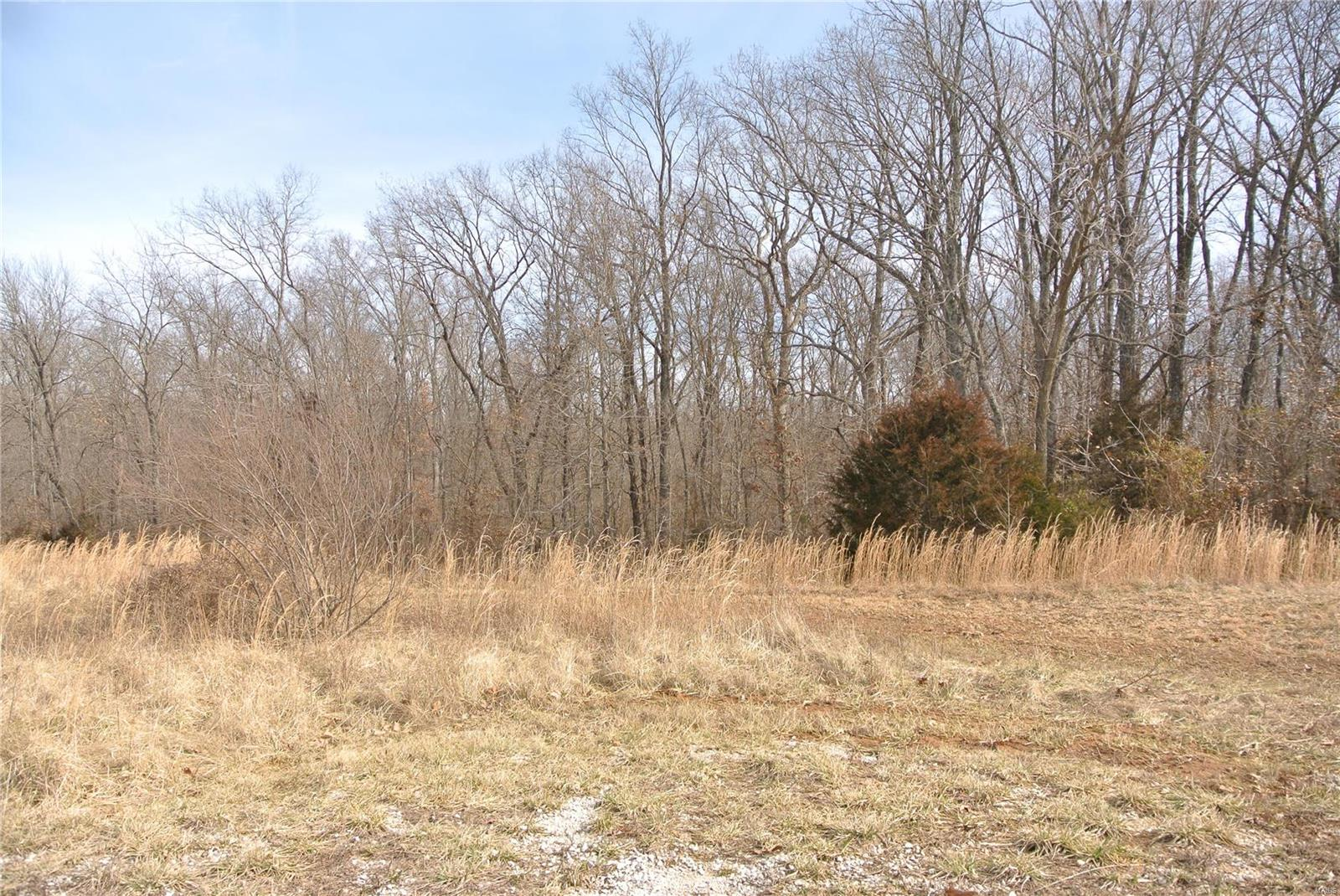 0 lot 34 Woods View Lane Property Photo 1