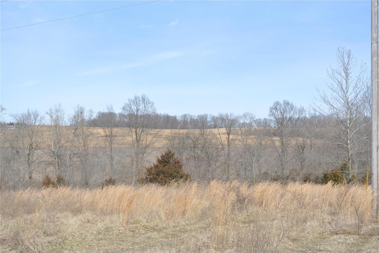 0 lot 35 Woods View Lane Property Photo - Perryville, MO real estate listing