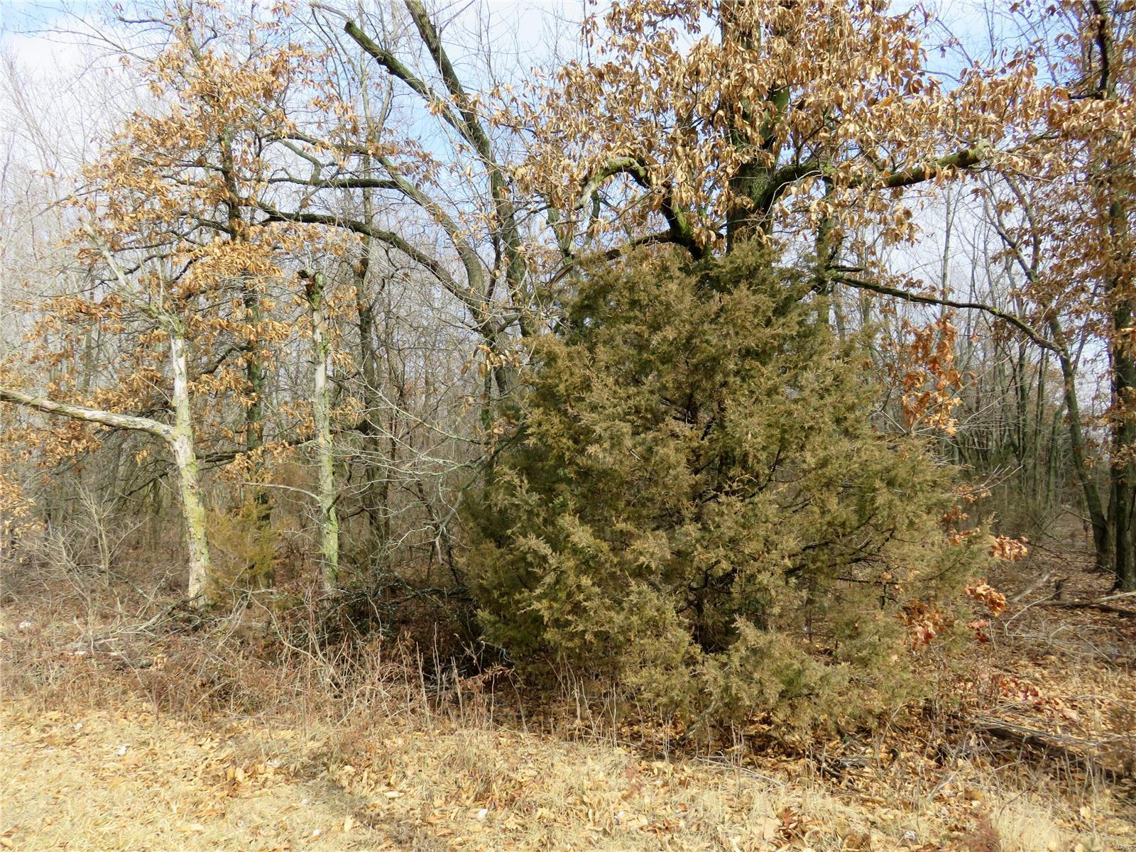 0 S Main Property Photo - Mount Olive, IL real estate listing