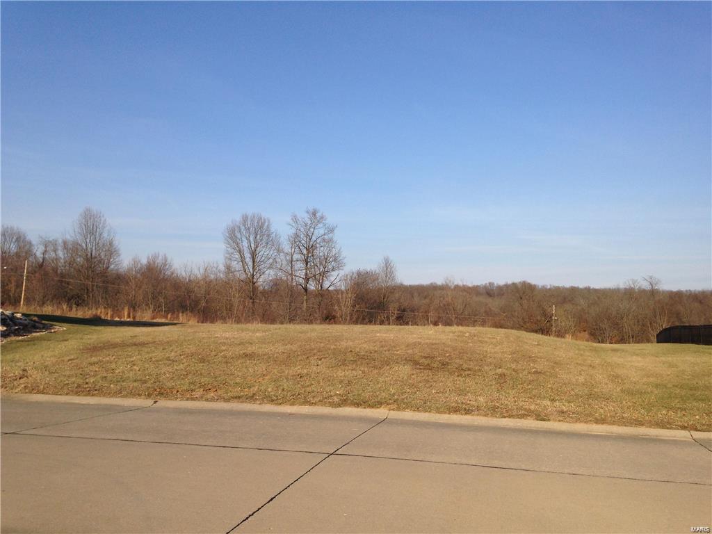 1522 Sloan Creek Drive Property Photo - Cape Girardeau, MO real estate listing