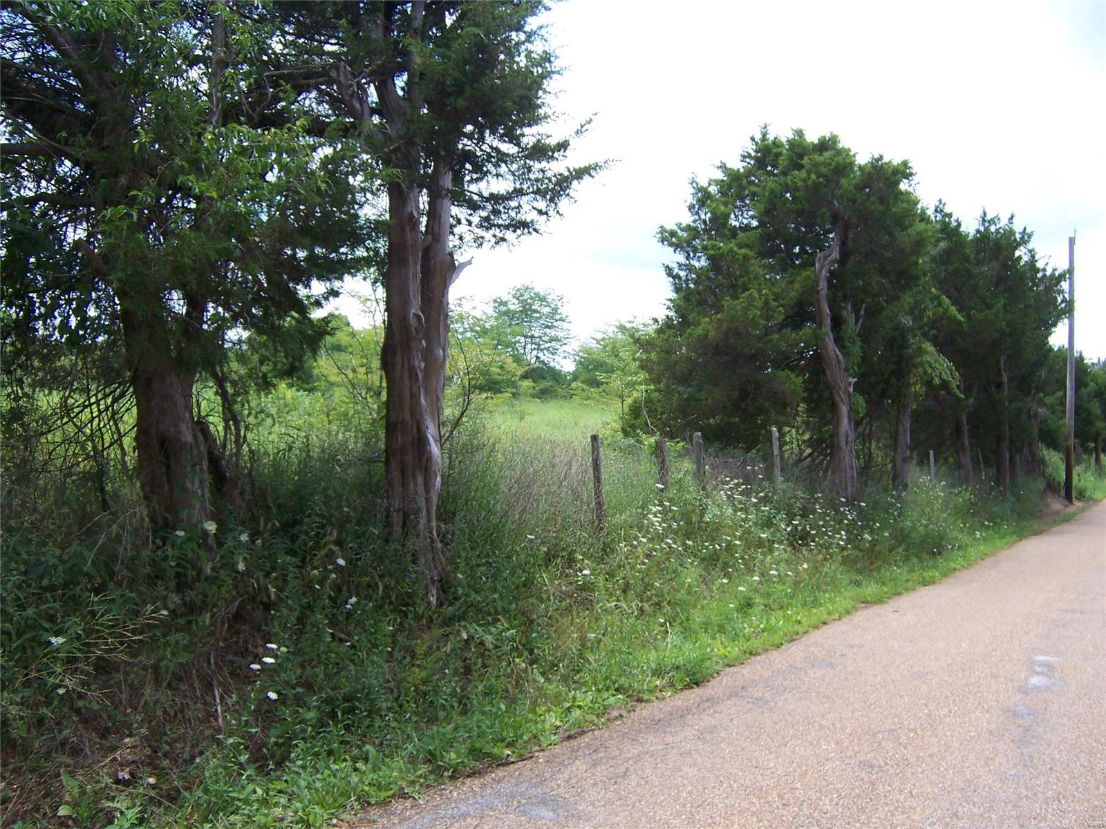 2383 Stonehouse Road Property Photo - De Soto, MO real estate listing
