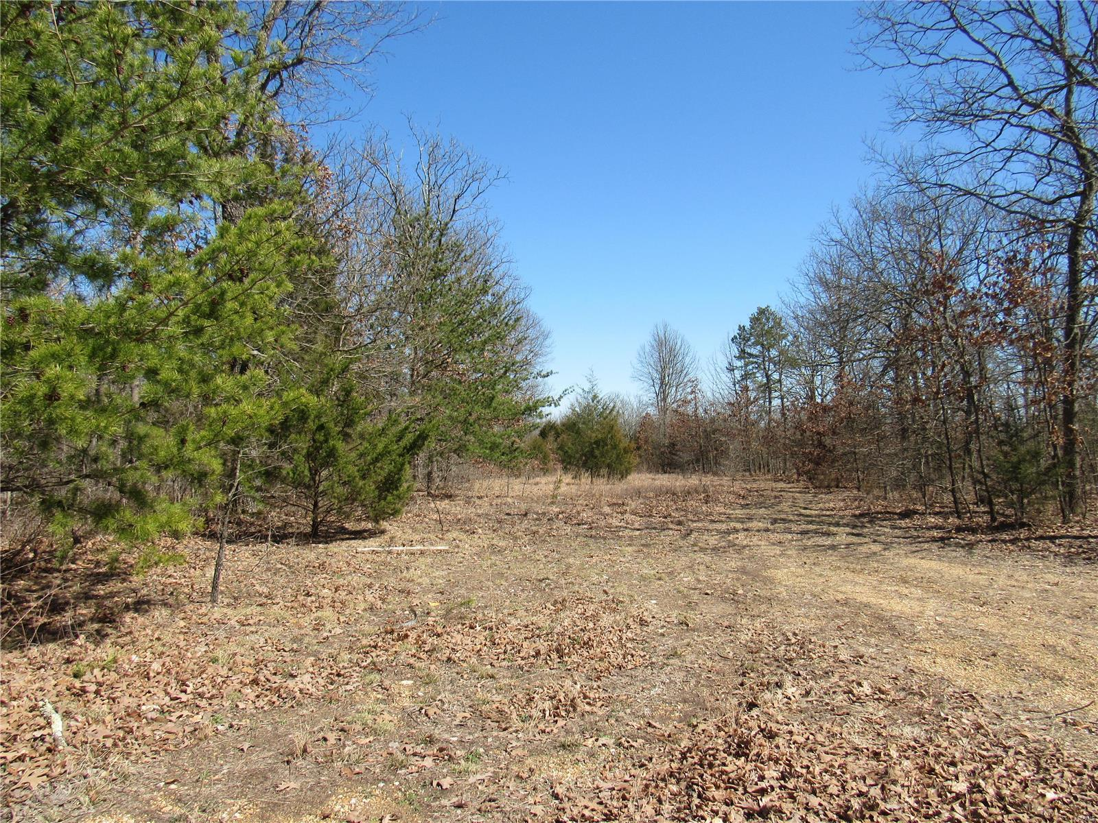 0 N Roanoak Property Photo - Cherryville, MO real estate listing