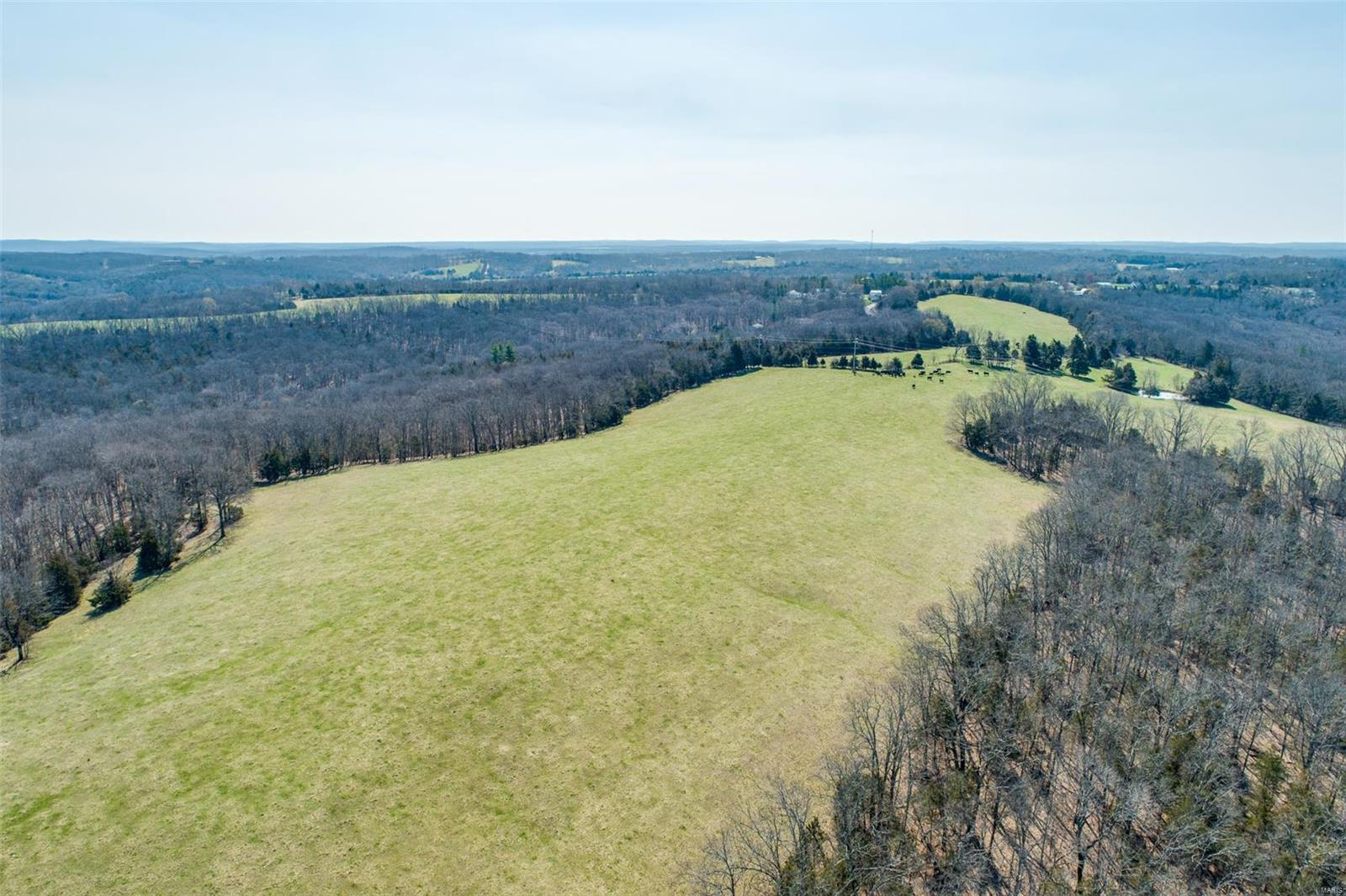 0 Armbruster Road Property Photo - De Soto, MO real estate listing