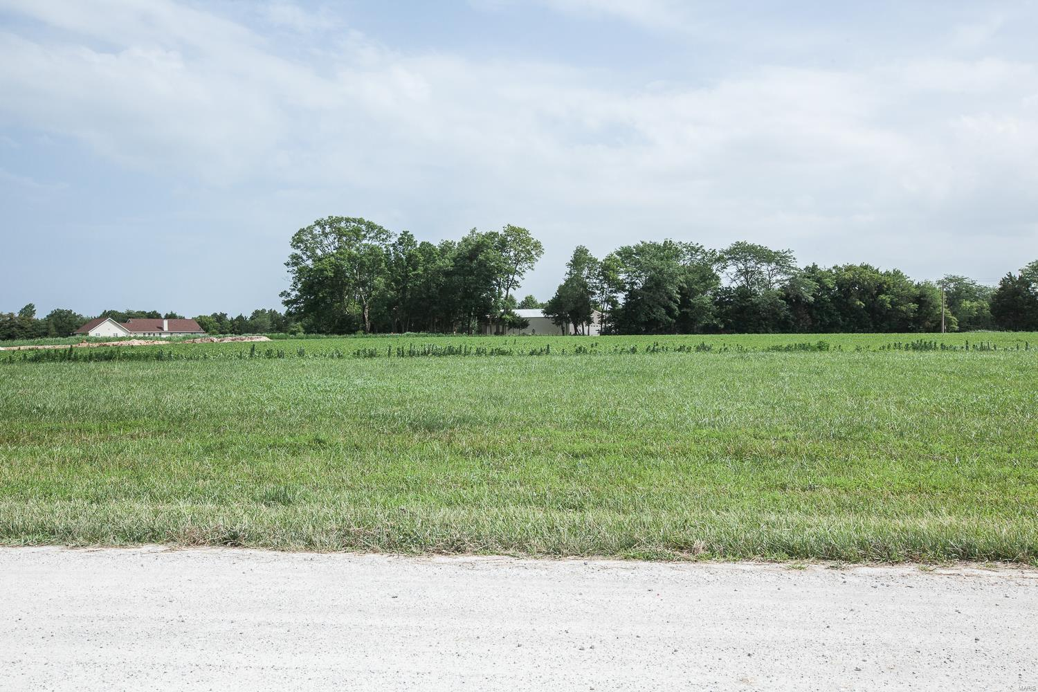 0 Lot 2 Deer Valley Lane Property Photo - Troy, MO real estate listing