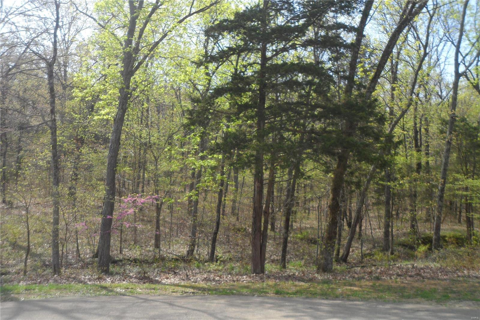 0 Forest Park Property Photo - Leadington, MO real estate listing