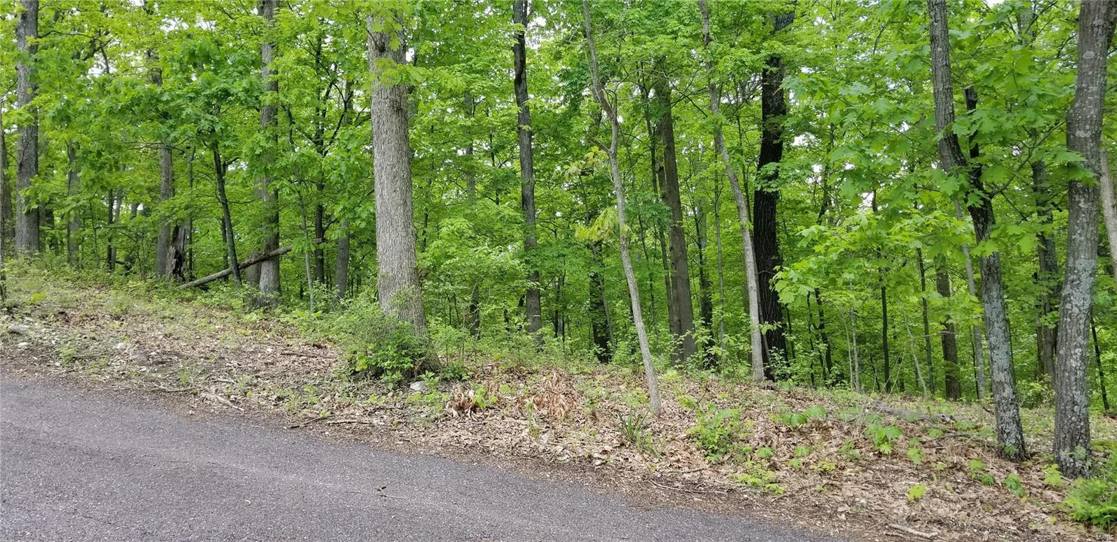 0 SPAVALE DRIVE Property Photo - High Ridge, MO real estate listing