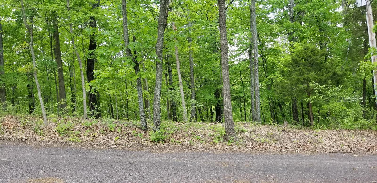 0 SPAVALE DR Property Photo - High Ridge, MO real estate listing