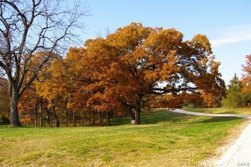 Benton Grove Real Estate Listings Main Image