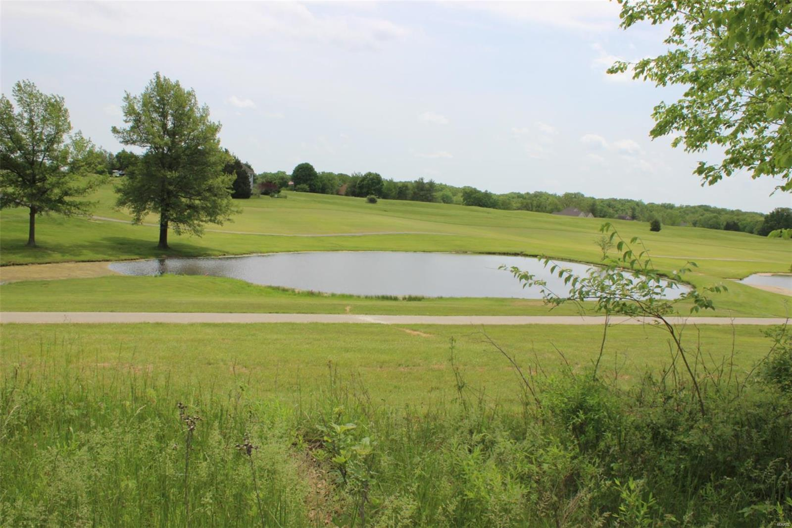 1177 Turnberry Drive Property Photo - Innsbrook, MO real estate listing