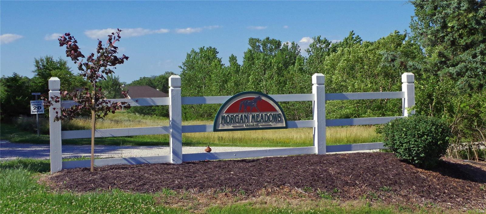 125 Morgan Valley Ln Property Photo - Foley, MO real estate listing