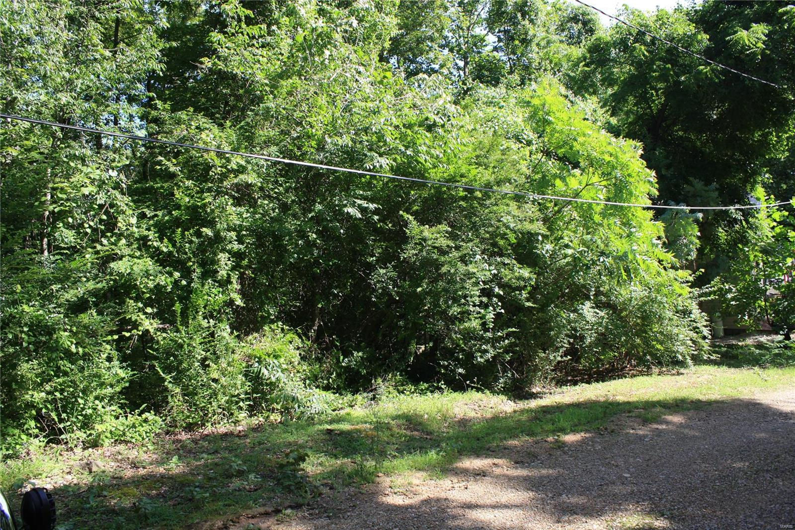 0 Beverly Drive Property Photo - Wappapello, MO real estate listing