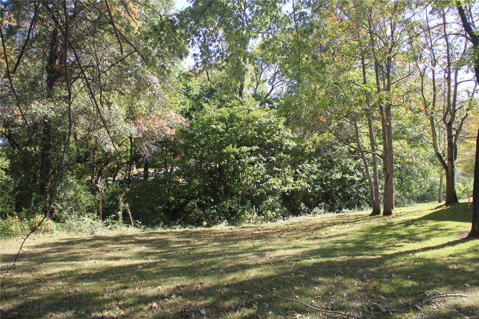 1758 Fountainbleu Property Photo - Worden, IL real estate listing