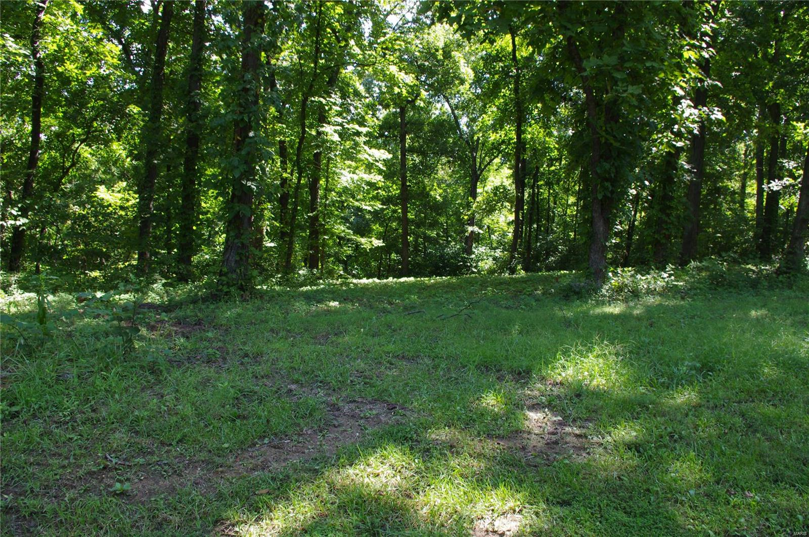 0 Lakebend Drive Property Photo - Winfield, MO real estate listing