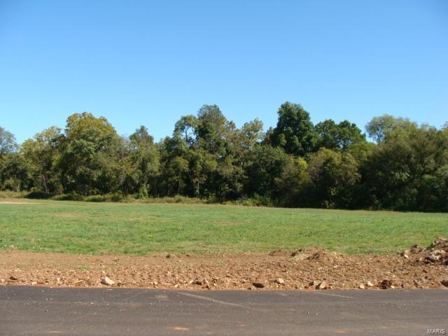 0 Hwy 67 Property Photo - Desloge, MO real estate listing